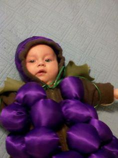 Infant Bundle of Grapes Costume