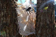Wicked Halloween Spider Web