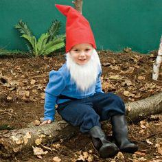 Little Bearded Gnome