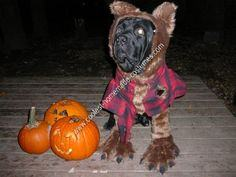 Homemade Werewolf Dog Halloween Costume Idea