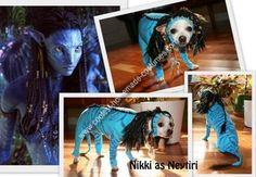 Homemade Avatar Dog Costume