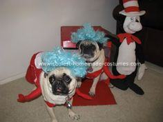 Homemade Pet Dog Costumes