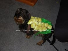 Homemade Corn Dog Costume