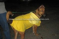 Homemade Dog Banana Costume