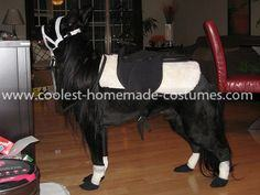 Homemade Dog Pony Costume