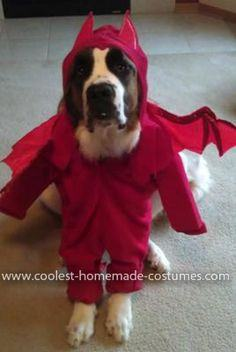 Homemade Devil Dog Costume