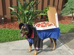 Homemade Dominos Deliver Dog Costume