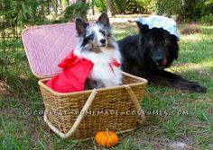 Cutest Little Red Riding Hood and The Big Bad Wolf Pet Dog Costumes
