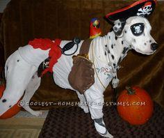 Cool Homemade Pirate Costume for a Dog