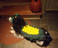 Sweet Cob of Corn Costume for a Dog