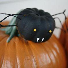 Family of friendly spider pumpkins